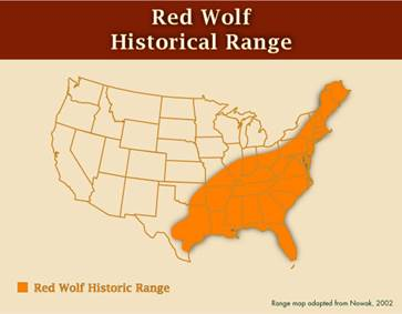 The Truth About Red Wolves - Maps of the location of wolves in the us